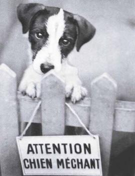 pancarte attention chien mechant