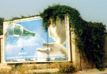 publicité chevelu