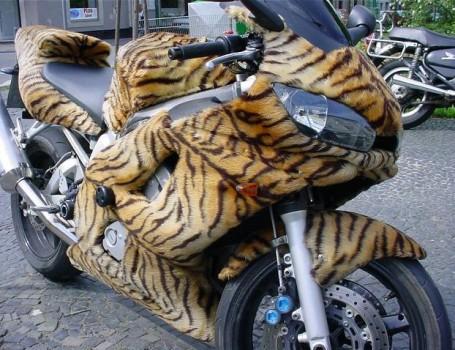 une vraie moto tigre