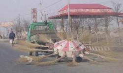 balayeuse chinoise moderne