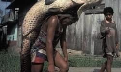 un énorme poisson