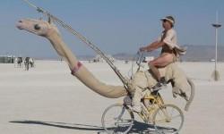 Un vélo en forme de dromadaire avec une seule bosse dans le dos