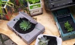 Comment recycler ses consoles en pots de fleurs ?